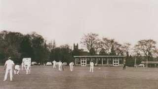 Cricket at Enville Hall