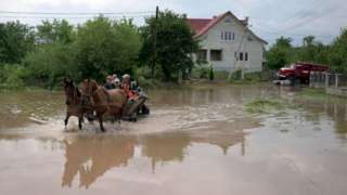 People travel through a flooded street in Ukraine on a horse and cart
