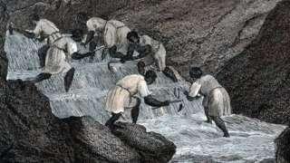 Este grabado de 1814 muestra a esclavos buscando oro en Brasil, cuando era una colonia portuguesa.