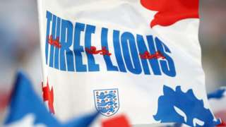 Three lions flag