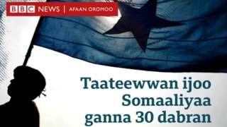 taateewwan ijoo Somaliyaa