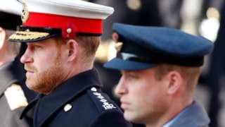 英国剑桥公爵威廉王子(右)与萨塞克斯公爵哈里王子(左)身穿军服在伦敦出席和平纪念日仪式(10/11/2019)
