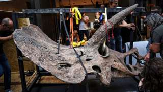 Workers move the skull of a triceratops into a gallery in Paris, France