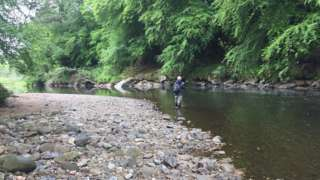 The Faughan River