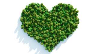 A green heart made of trees