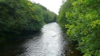 Two boys were rescued from the River Tawe by firefighters