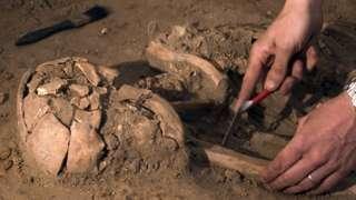 Human skeleton being excavated