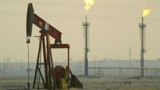 Campos de petróleo