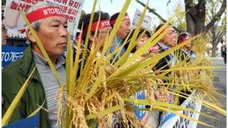 농민공동행동 회원들이 24일 서울 종로구 정부서울청사앞에서 손팻말과 벼를 들고 기자회견을 진행하고 있다