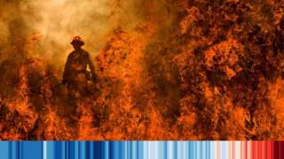 A firefighter in a wildfire