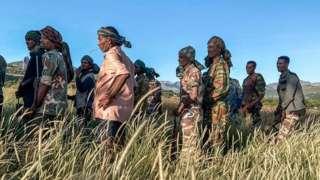 टिग्रे उत्तरी इथियोपियामा पर्छ