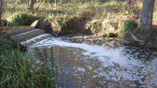 Plumpton Mill Stream pollution
