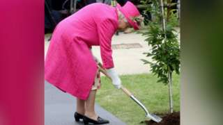 The Queen planting a tree