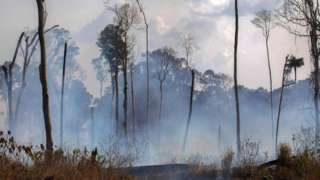 View of a burnt area after a fire in the Amazon rainforest near Novo Progresso, Para state, Brazil, on August 25, 2019