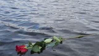 Rose in the lake