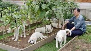 Güney Kore Cumhurbaşkanı Moon Jae-in köpek sevgisiyle biliniyor.