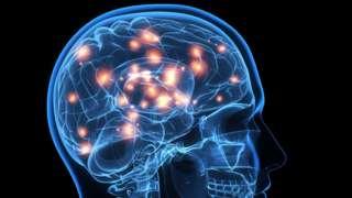 Ilustração do cérebro humano