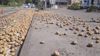 Potato blockade
