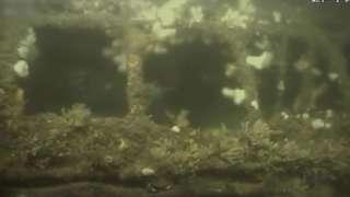 Image of sunken vessel