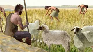 नवपाषाणयुगमा मानिसहरूले भेडा, बाख्रा र गाई पाल्न थालेका थिए