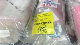 Fentanyl seized