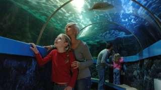 woman and girl looking up at aquarium