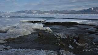 Greenland island is world's northernmost island - scientists