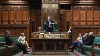 Hybrid Parliament