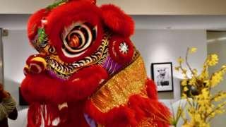 Chinese lion dancers inside a Birmingham office building