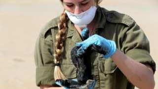 جندية إسرائيلية تحمل كتلة من القطران أثناء تنظيف أحد الشواطئ الملوثة