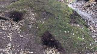 Holes at the dolmen