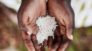 Les esclaves africains ont modifié les recettes d'Afrique de l'Ouest pour les adapter au monde de la plantation.