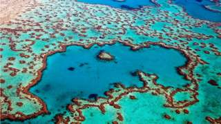 Aerial view of the Heart Reef in the Great Barrier Reef