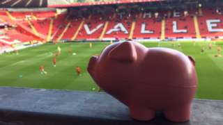 Plastic pigs at the Valley