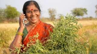 पीएम किसान योजनेची माहिती