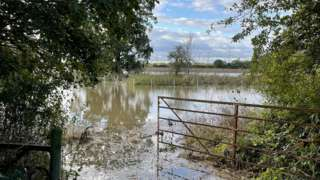 Essex flooding