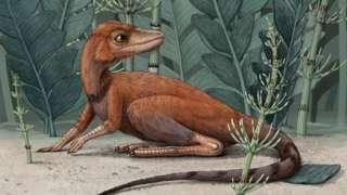 Dinosaur ancestor