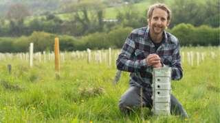 Woodland Trust tree planting