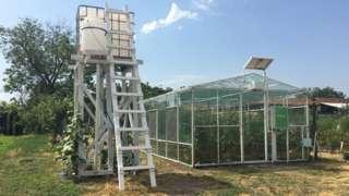 Стакленик и резервоари са водом и прехраном за биљке