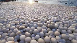 ဖင်လန်က ဟေလူအိုတို ကမ်းခြေမှာ တနင်္ဂနွေနေ့က ဥပုံသဏ္ဍာန် ရေခဲလုံးတွေ ဖုံးသွားတာကို ရစ်စတို မတ်တီလာက ဓာတ်ပုံရိုက်ခဲ့ပါတယ်။