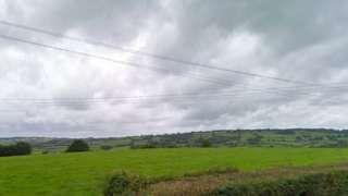 fields near Buckland St Mary