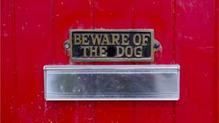 Postbox with beware of the dog sign