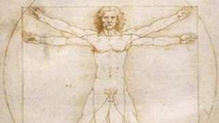 Vitruvian Man on display in a museum