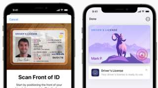 Examples of driver's licenses in the Apple Wallet app