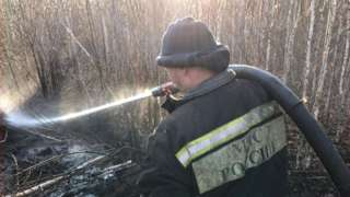Пожарный тушит торфяник