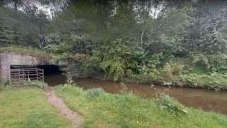 River Clywedog near Wrexham