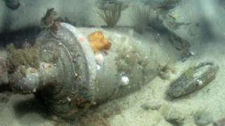 A bronze cannon in situ in Area D, wreck of the first-rate warship HMS Victory.
