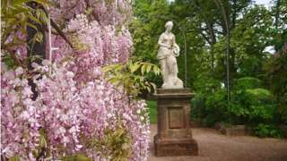 Flowers in bloom at Trentham Gardens in Staffordshire