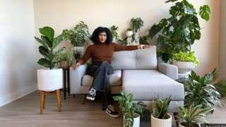 코로나19 시대 실내에 식물을 배치하는 '바이오필릭' 디자인이 각광받고 있다