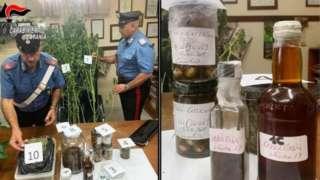 Polisi yasanze ibihingwa bibiri binini by'urumogi ndetse n'uburozi bwa 'Indian hemp' mu rugo rwa Carmelo Chiaramonte